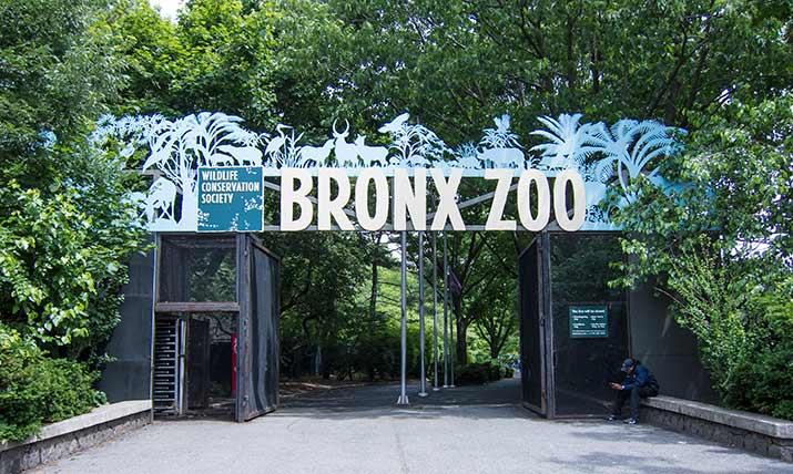 zoo-ferst