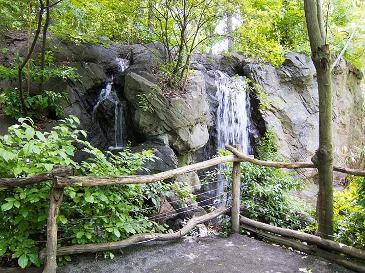 zoo-vodop