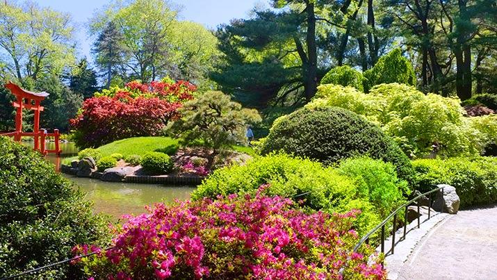 Brooklyn.Botanic.Garden